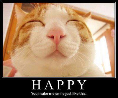 Lolcat happy